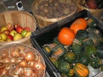 Storage-Friendly Survival Gardening