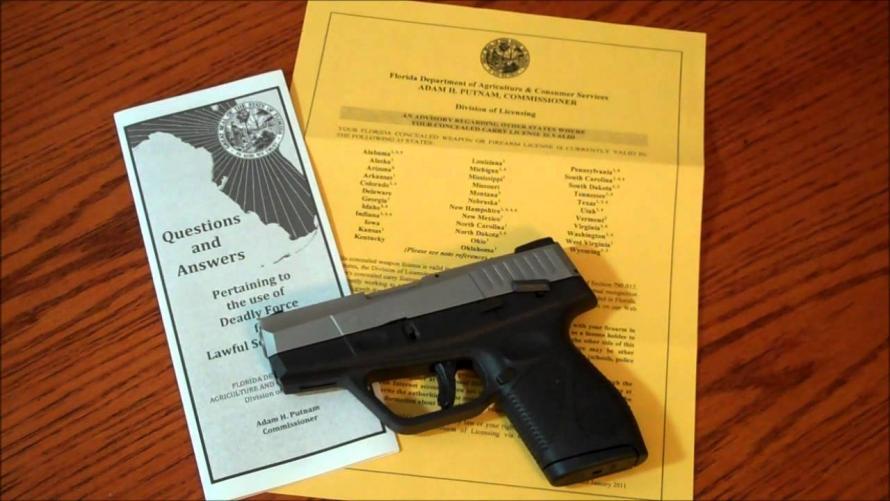 Florida Failed To Run FBI Background Checks On Gun Owners Due To Forgotten Password